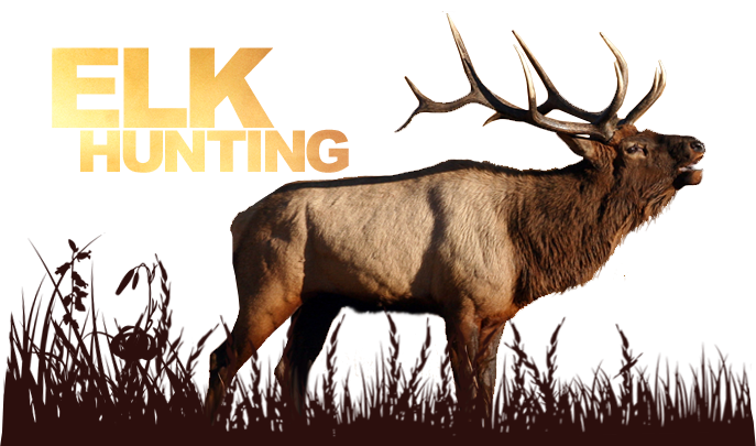Deer Hunting Outfitters Alaskan Hunting Outfitters Bow Hunting Outfitters Elk Hunting Outfitters Moose Hunting Outfitters Bear Hunting Outfitters